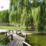 University of International Business and Economics Lake