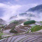 travel-tour-china-scenery--558-4