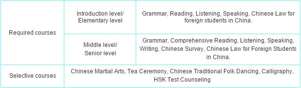dmu-chinese-language-long-term-course-structure