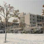 zust snow