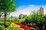 Shandong University Xinglongshan Campus Scenery
