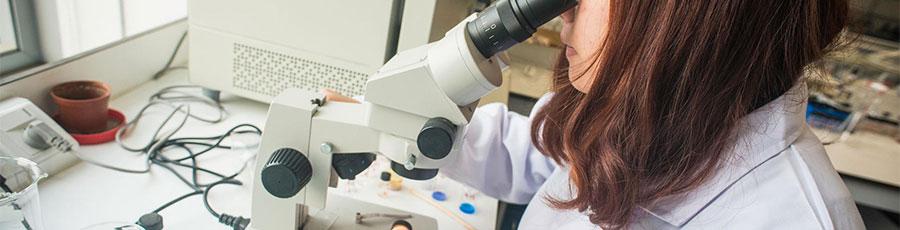 MRes Advanced Chemical Sciences XJTLU