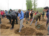 Central University of Finance and Economics (CUFE) tree planting international students